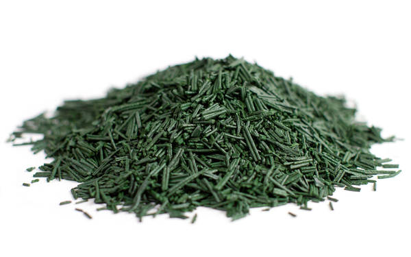 Spiruline algue : peu couteux - solide - ideal