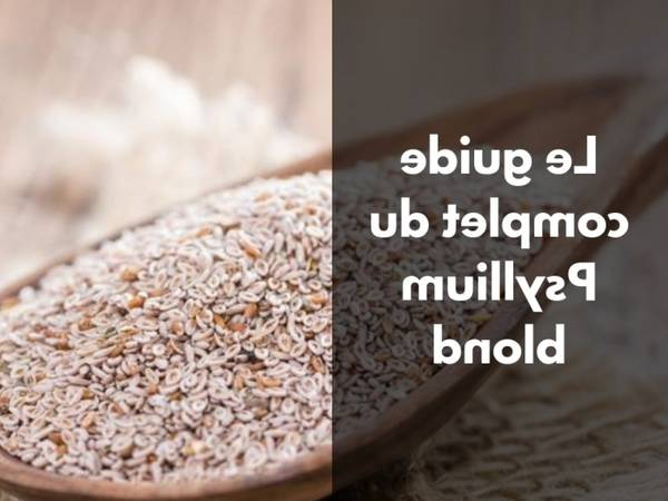 Psyllium brun : bonne affaire - commander - performant